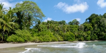 Indispensable et plage du Costa Rica